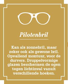 eyecaremore.be - Brillen - Pilotenbril